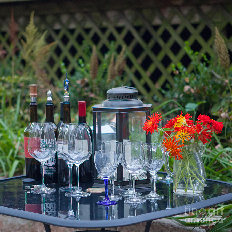 Wine Photograph - Garden Pary by Kay Pickens