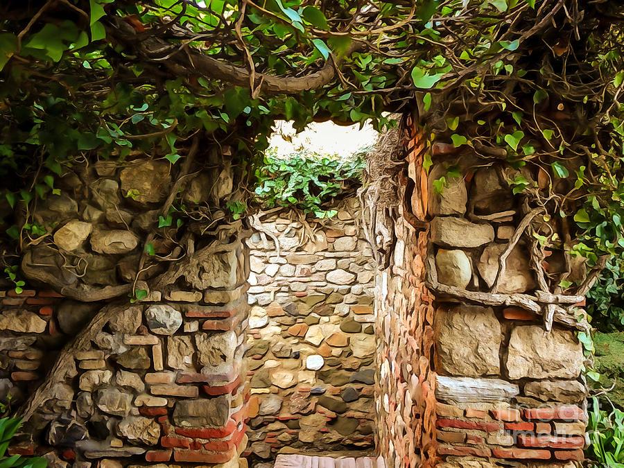 Garden Walls Photograph