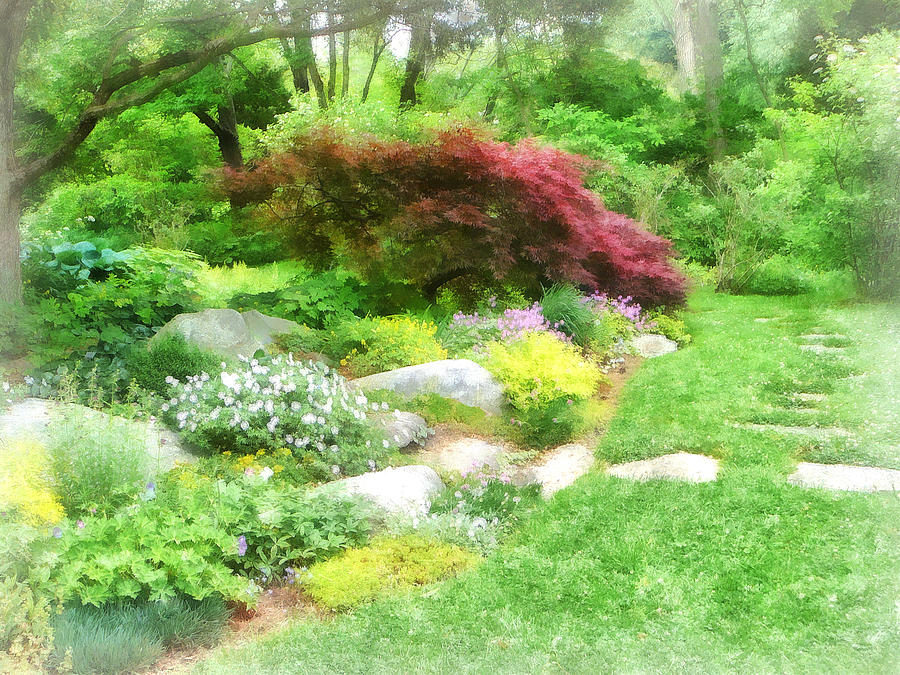 Garden With Japanese Maple Photograph By Susan Savad