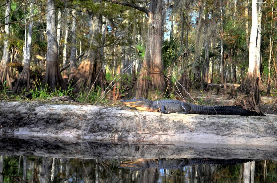 Gator Country Digital Art  - Gator Country Fine Art Print