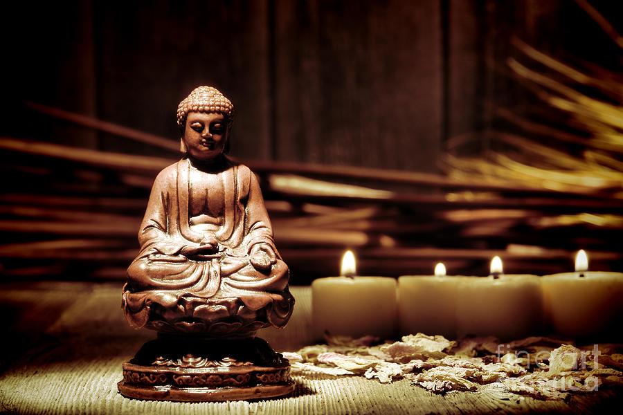 Meditation Photograph - Gautama Buddha by Olivier Le Queinec