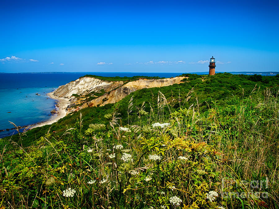 Light House Photograph - Gay Head Light And Cliffs by Mark Miller