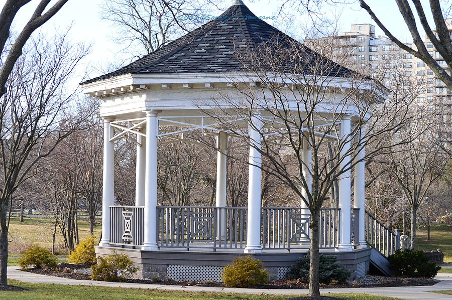 Gazebo In Buccleuch  Park Photograph