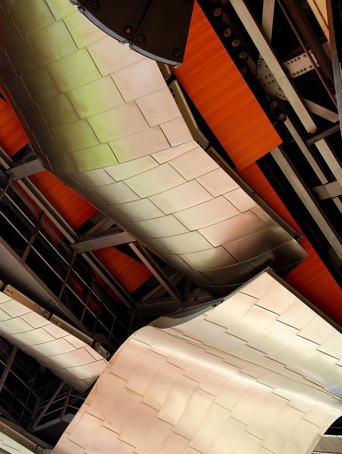 Gehry Up Close Photograph
