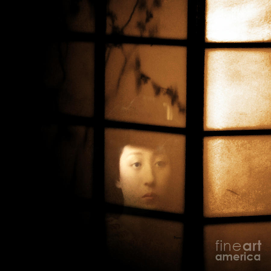 Geishan Nights Photograph  - Geishan Nights Fine Art Print