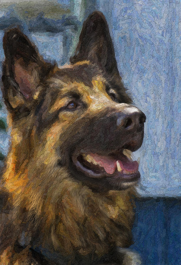 Dog Painting - German Shepard by Bill Linhares