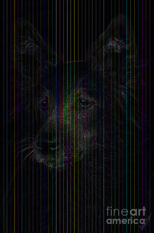 German Shepherd - Alsatian Digital Art