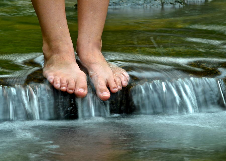 Get Your Feet Wet Photograph