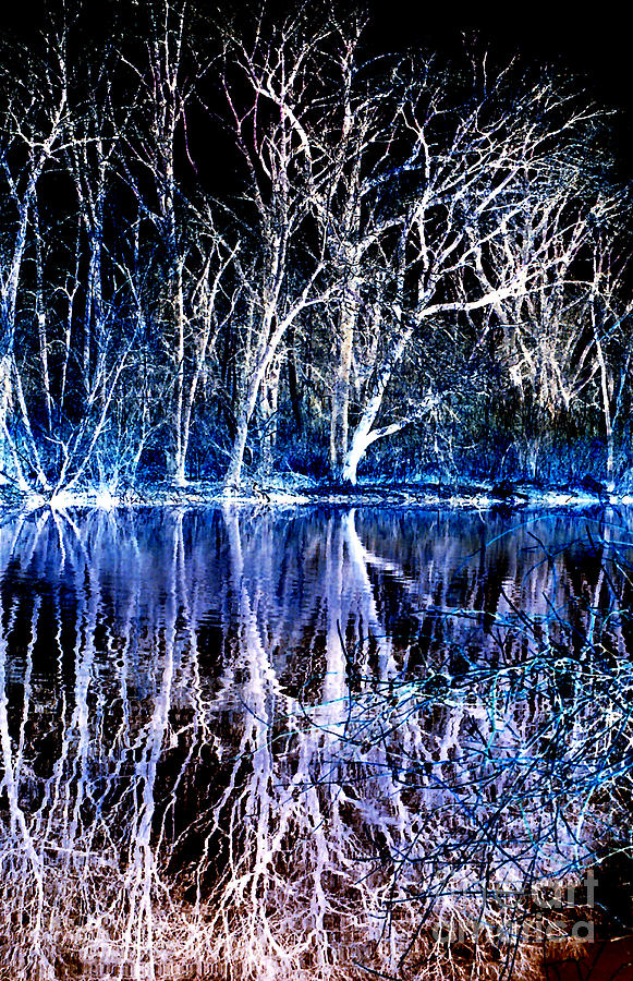 Ghostly Trees In Reflection Photograph