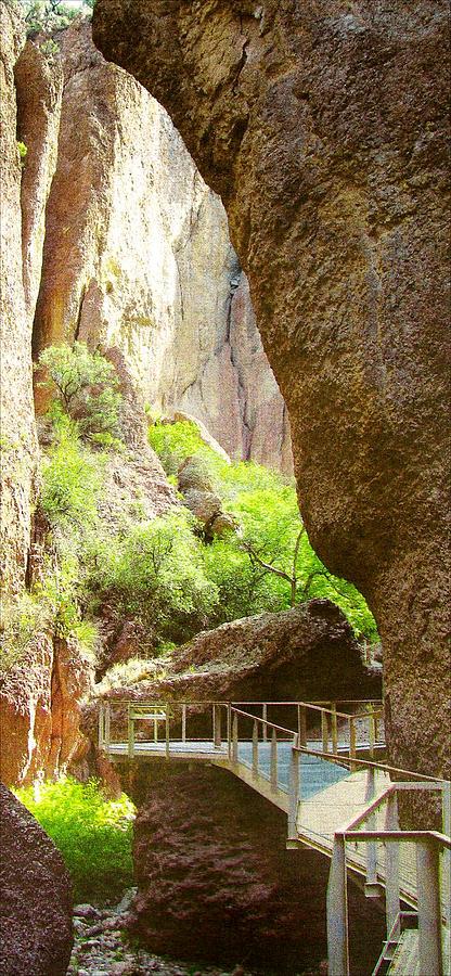 Gila National Park Mixed Media