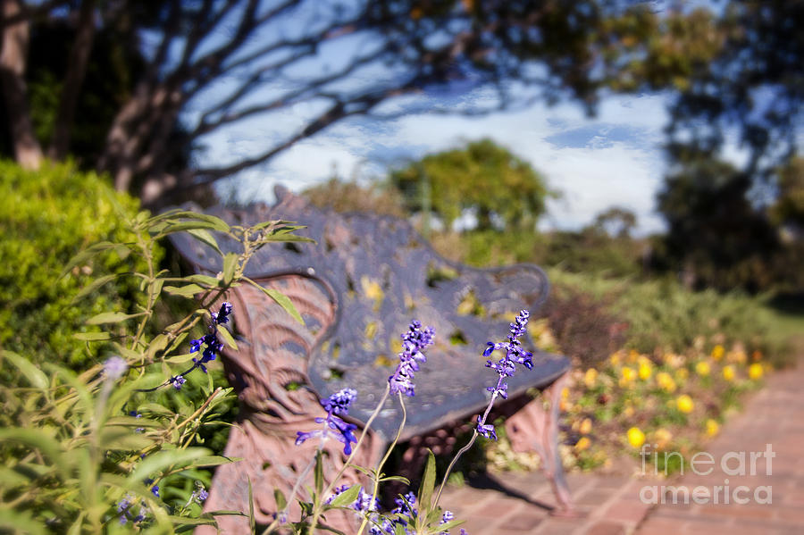 Gilcrease House Garden Flower Photograph