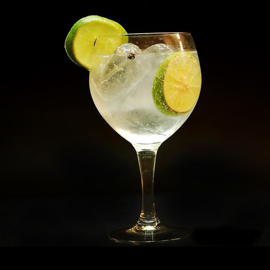 Gintonic Photograph By Gina Dsgn
