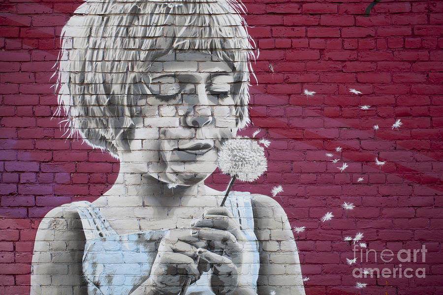 Girl Blowing A Dandelion Photograph