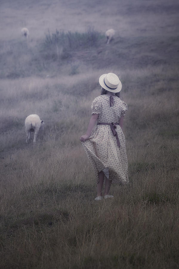 Girl With Sheeps Photograph  - Girl With Sheeps Fine Art Print