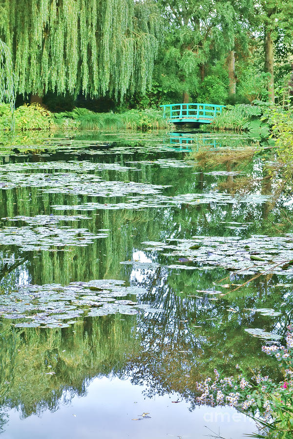 France Photograph - Giverny by Olivier Le Queinec