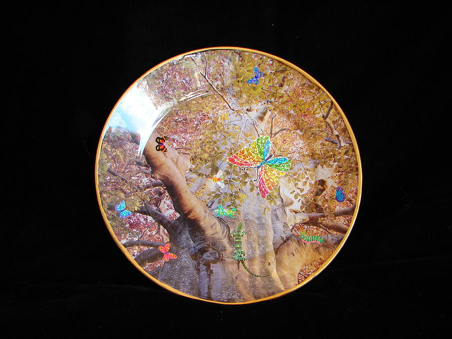 Autumn Landscape Looking Upwards Through Tree Branches. Glass Art - Glorious Autumn by Sarah Wharton White