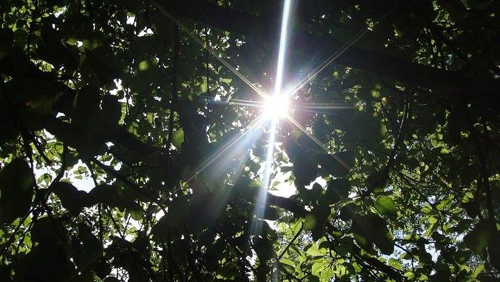 Glory Shine Photograph