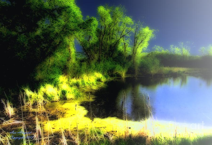 Glowing Pond On A Foggy Night Photograph
