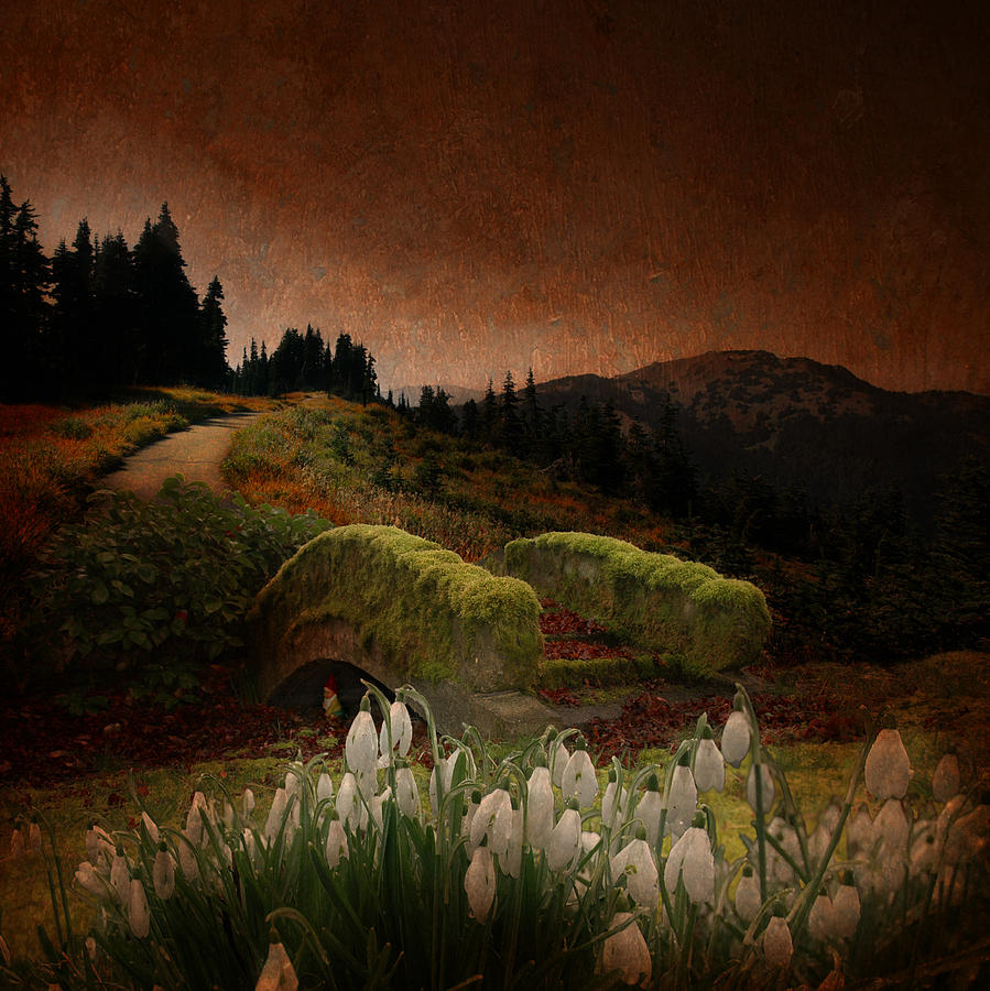 Gnome In A Mythical Landscape Photograph  - Gnome In A Mythical Landscape Fine Art Print