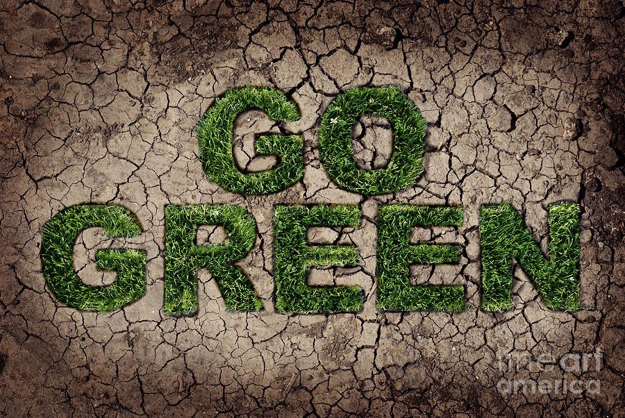 Green Pyrography - Go Green by Jelena Jovanovic