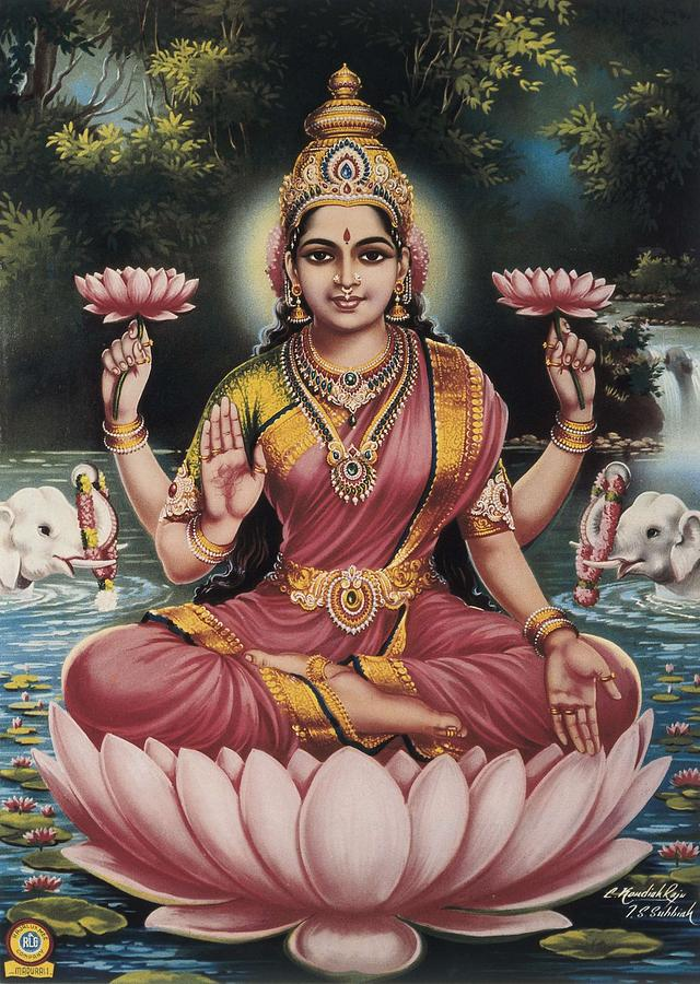 Goddess Srhi Sentamarai Laximi, Wife Photograph