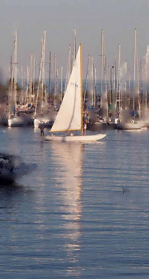 Going Out For A Sail Photograph  - Going Out For A Sail Fine Art Print