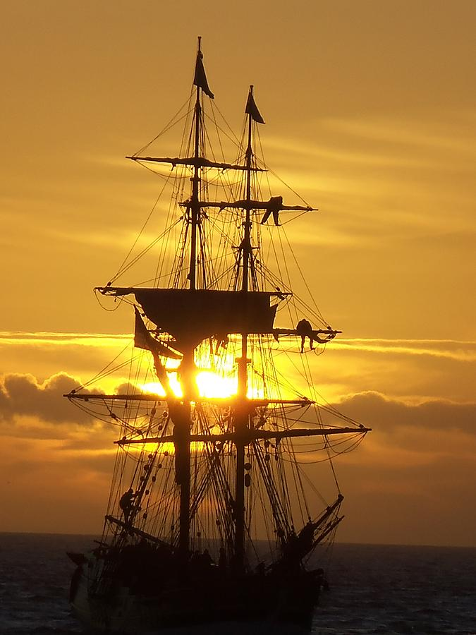 Gold Lady Washington  Photograph