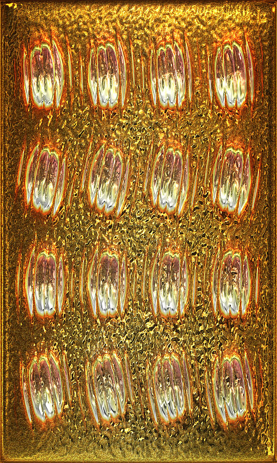 Gold Panel 05 Digital Art  - Gold Panel 05 Fine Art Print