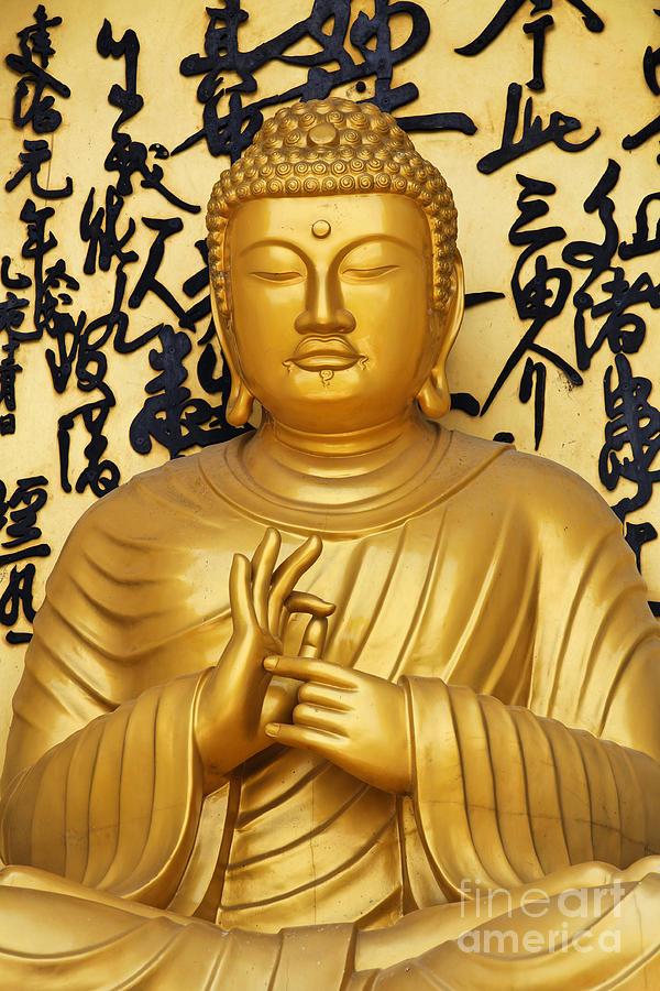 Golden Buddha Statue At The World Peace Pagoda Pokhara Photograph