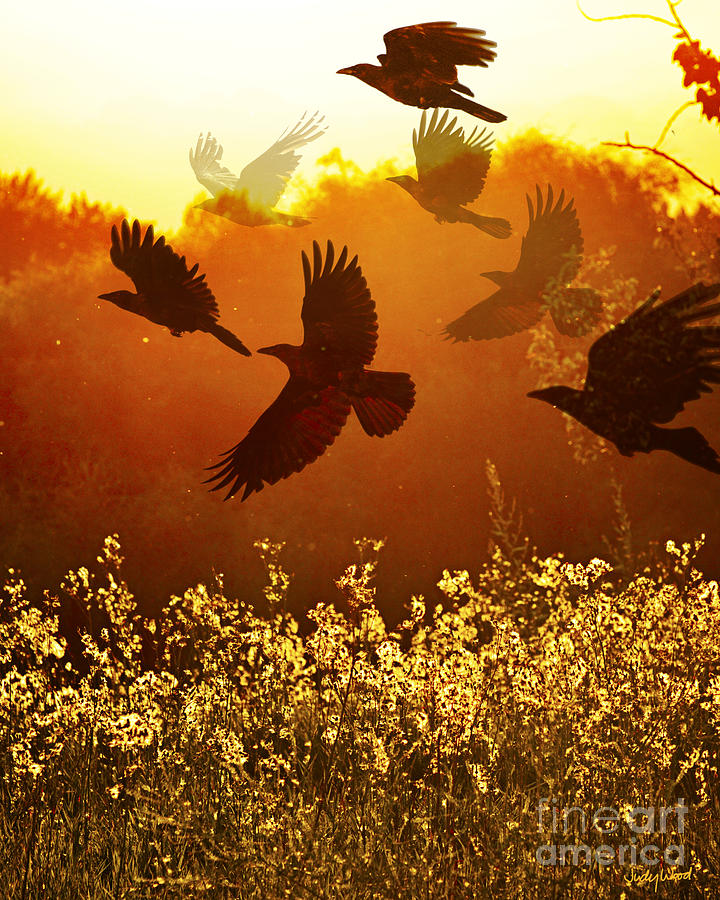 Golden Flight Digital Art  - Golden Flight Fine Art Print