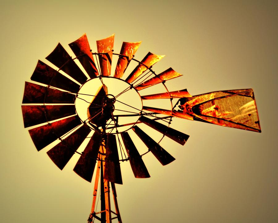 Golden Light Windmill Photograph