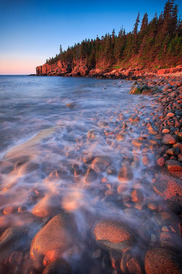 Golden Otter Beach  Photograph