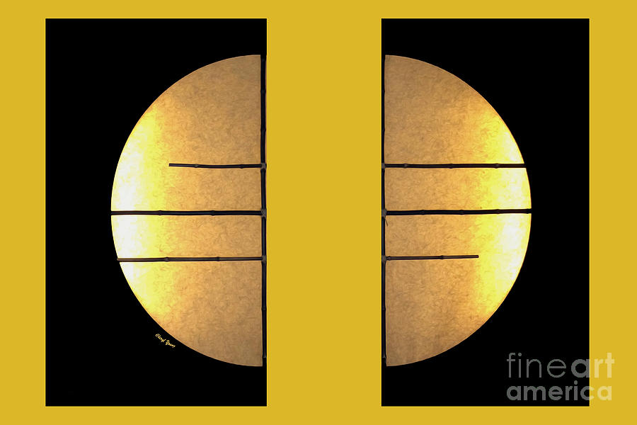 Bamboo Sun Images Photograph - Golden Sun Diptych by Cheryl Young