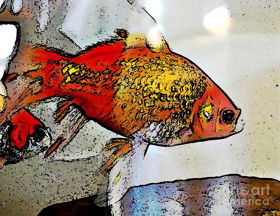 Goldfish Photograph  - Goldfish Fine Art Print