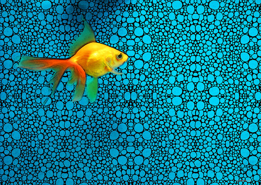 Goldfish Study 3 - Stone Rockd Art By Sharon Cummings Painting  - Goldfish Study 3 - Stone Rockd Art By Sharon Cummings Fine Art Print