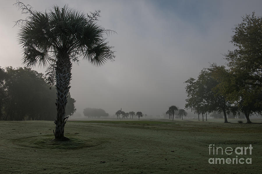 Golfing In The Fog Photograph
