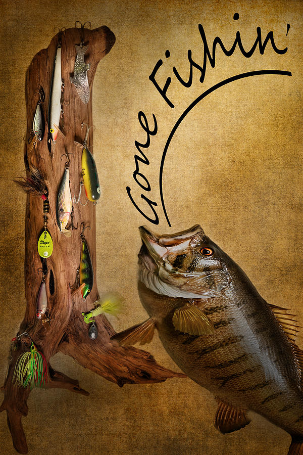 Fish Photograph - Gone Fishin by Bill Wakeley