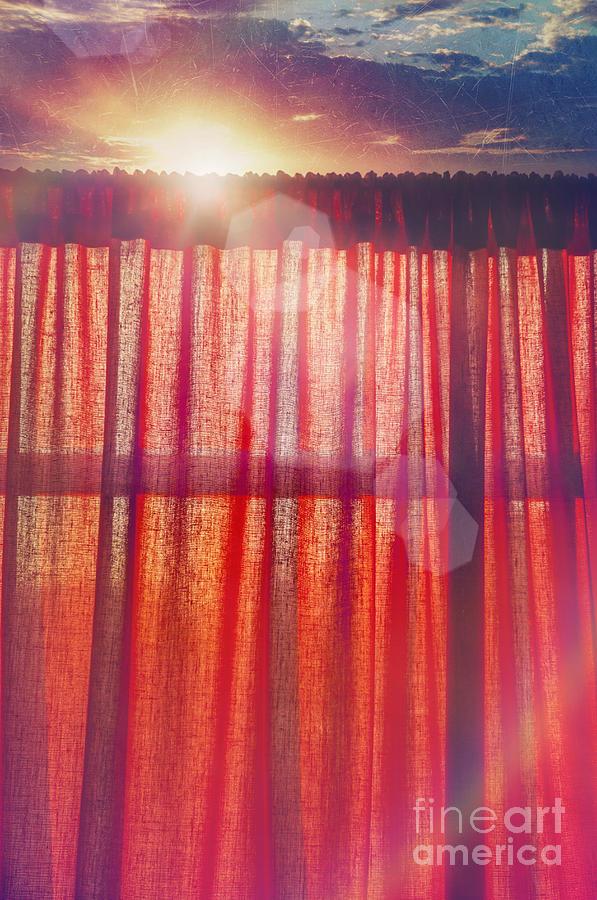 Goodmorning Sunshine Photograph