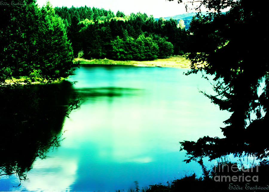 Gorge Waterway Victoria British Columbia Photograph  - Gorge Waterway Victoria British Columbia Fine Art Print