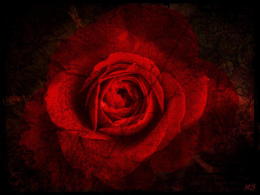 Dramatic Teal Green Rose Portrait Jennie Marie Schell furthermore Electrical Diagram For Lighting besides Something Dark Cyan Trevor Ashford also Tulisa Contostavlos In White Bikini Barbados December 2014 249855 in addition Wallpaper Vector Widescreen 1440x900 4. on twitter dark rose radio