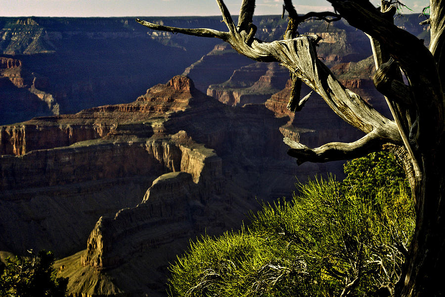 Grand Canyon Hermit Point Sunset Photograph  - Grand Canyon Hermit Point Sunset Fine Art Print