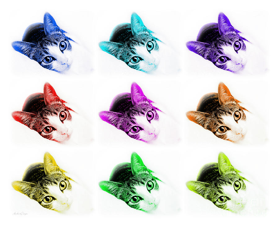 Abstract Photograph - Grand Kitty Cuteness 3 Pop Art 9 by Andee Design
