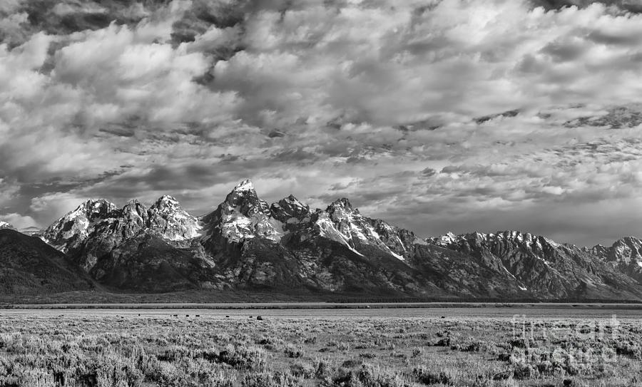 Grand Teton Majesty Photograph