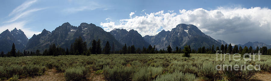 Grand Teton National Park Panorama Photograph