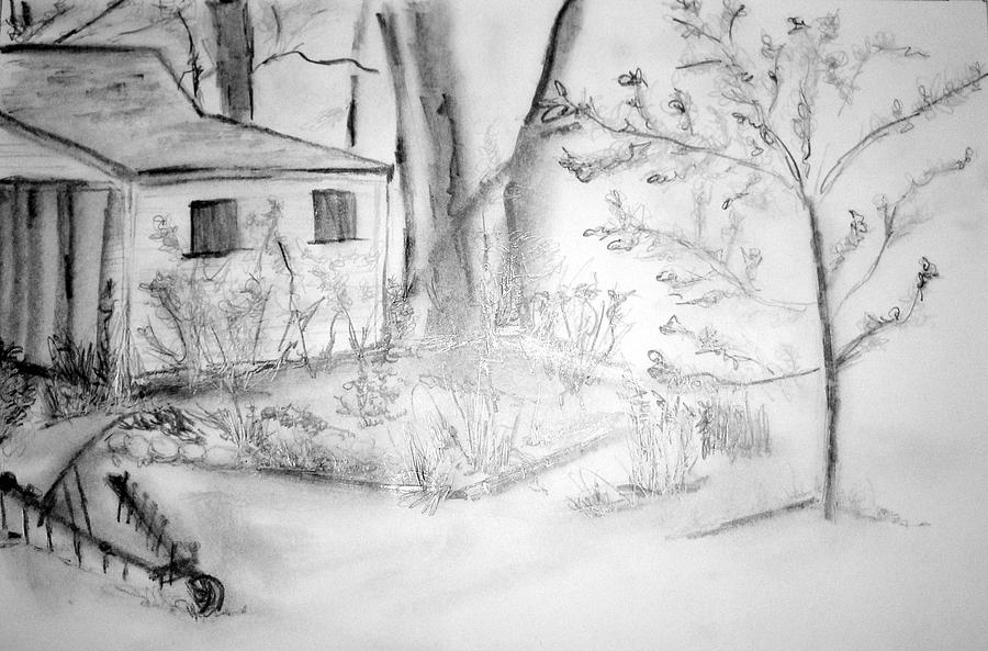Granpas Backyard IIi Drawing