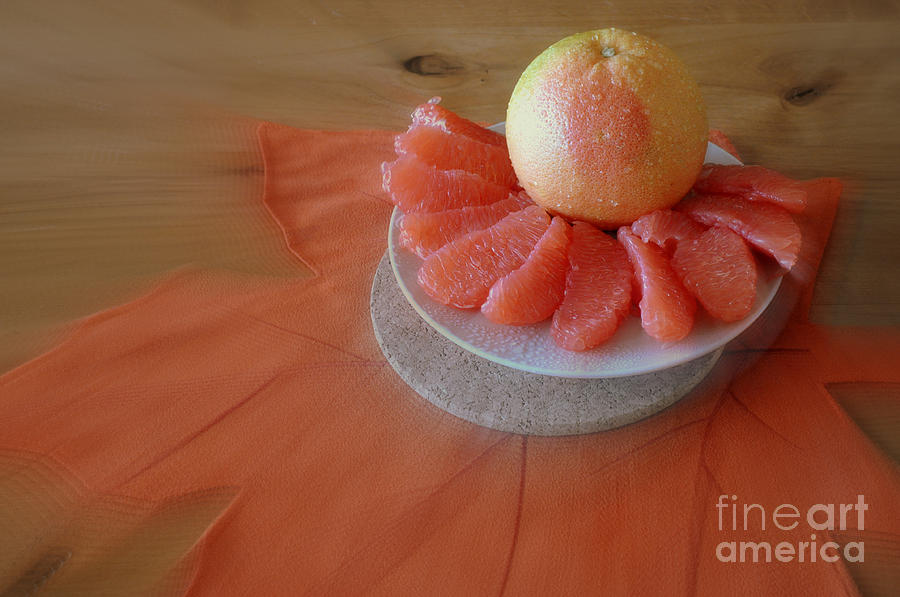 Grapefruits Photograph