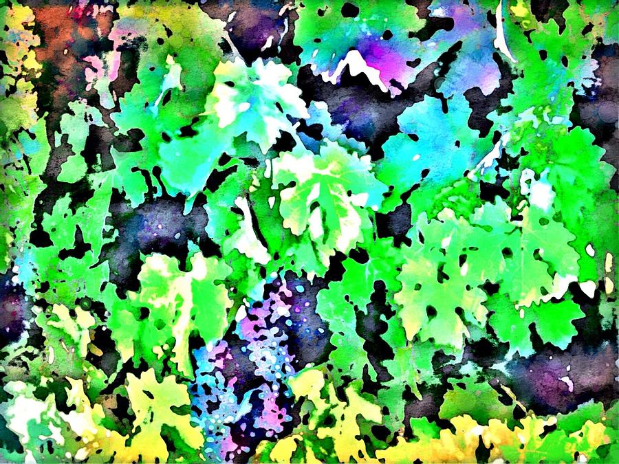 Grapes On The Vine Digital Art  - Grapes On The Vine Fine Art Print