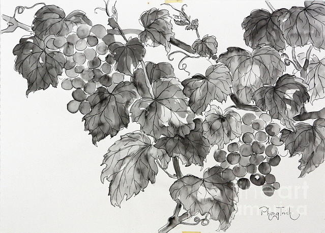 Grapevine In Late Summer Painting