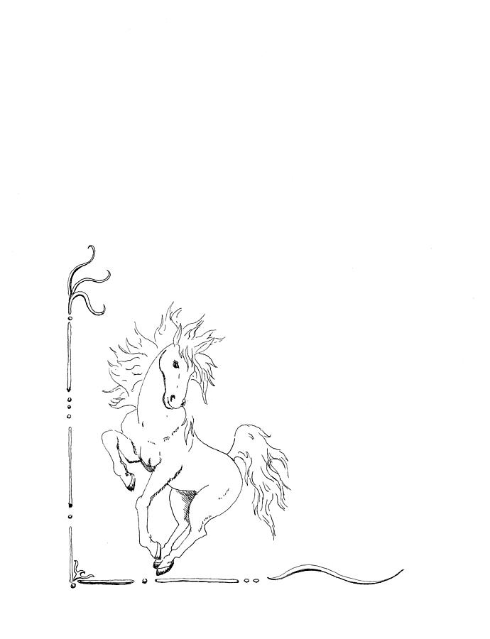 Graphic Horse Drawing  - Graphic Horse Fine Art Print