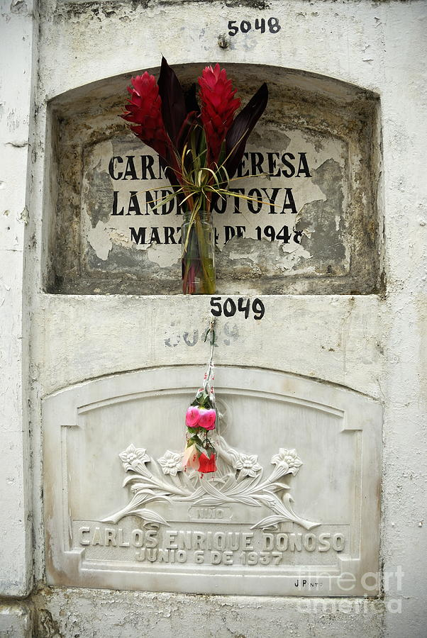 Graveyard At La Ciudad Blanca Photograph